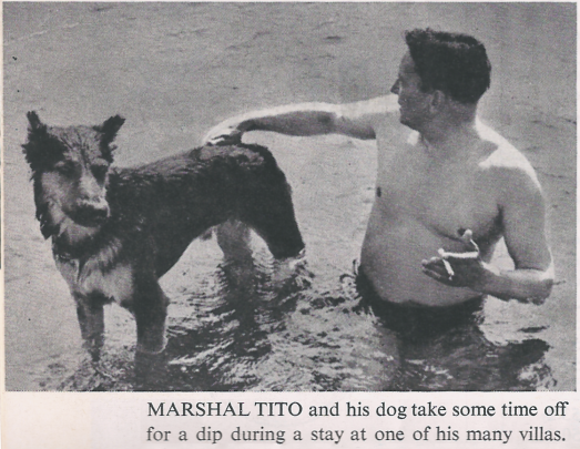 Marshal Tito takes a dip
